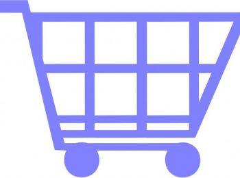 ecommerce for entrepreneurs.